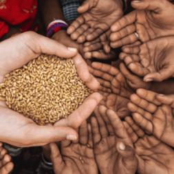 مدیریت مواد غذایی در شرایط بحران