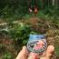 چگونه در جنگل و بیابان یک قطب نمای ساده بسازیم ؟