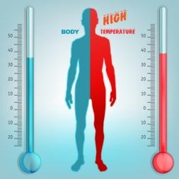 چگونه در گرمای تابستان بدن خود را خنک نگه داریم